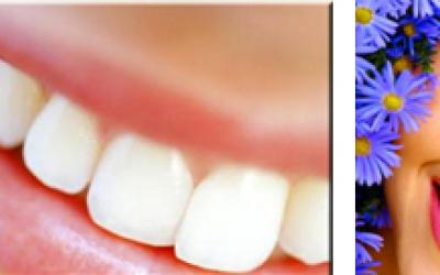 Do que são feitos os Dentes?